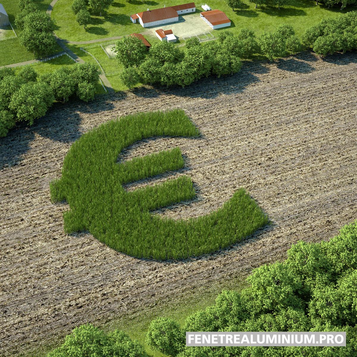 euros vert gazon
